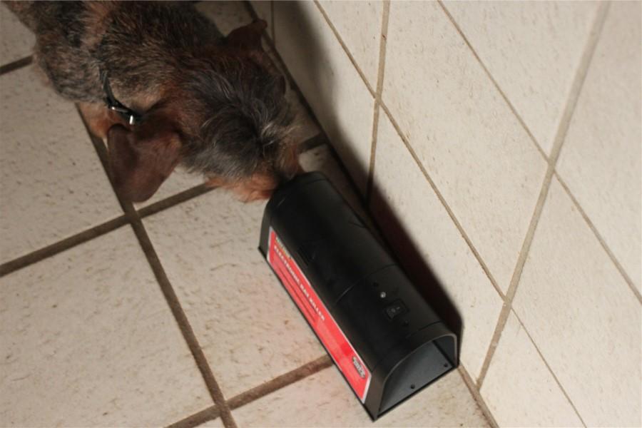 -Meget effektiv – speciel tunnellignende design tiltrækker rotter