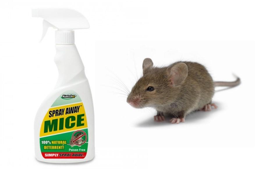 skræmme rotter væk