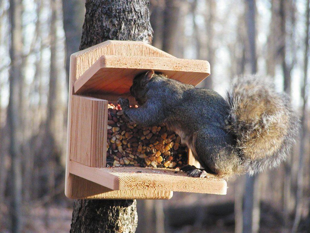 egern_foderhus
