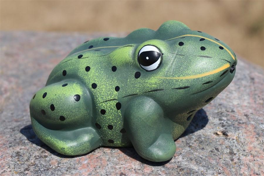 greeting_frog